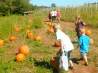 karabin farms kid friendly things to do CT,places to go with children Connecticut, kid friendly things to do Connecticut